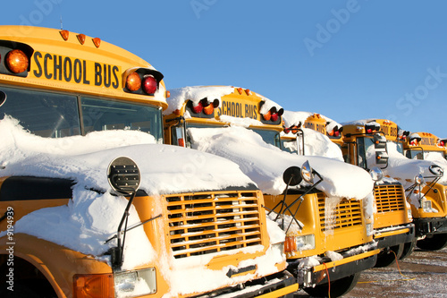 A row of school buses covered in snow.