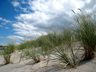 Dune at Wohlenberg beach