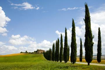 Italien, Toskana, Landschaft