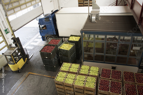 Apple packing and transportation
