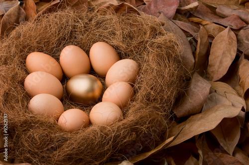 poster of One golden and ninde regular eggs on nest