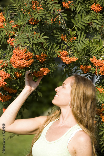 poster of pretty model posing in outdoor admiring ashberry tree