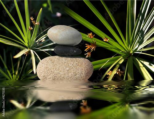 Jardin zen - 9271335