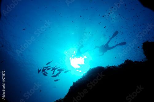 Papiers peints Recifs coralliens Paysage sous marin 3