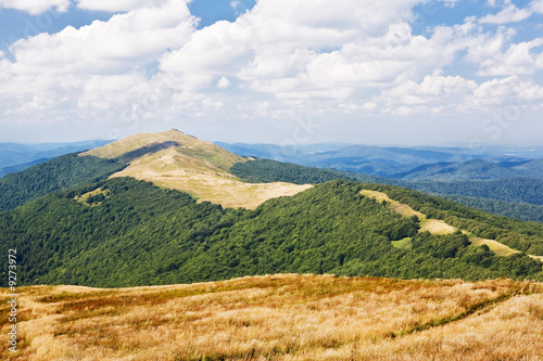 View of mountains with green trees and meadow and blue sky..
