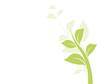 vecteur série - floral design feuilles et liane vectorielle