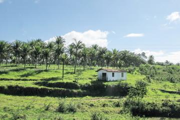 Petite maison dans la prairie, Brésil.