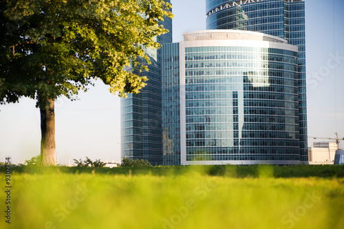 High-rise building, tree and grass at city at sunrise