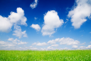 perfect meadow and perfect blue sky