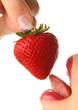 Quadro Erdbeere