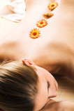 young beautiful woman is relaxing with flowers in her back poster