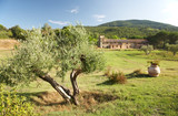 View of a luxury country house in the tuscan hills, Italy. poster