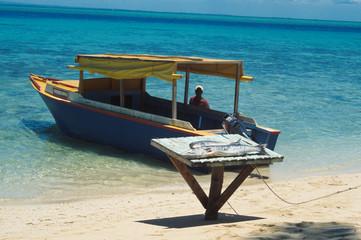 Venditore di pesce ai Caraibi