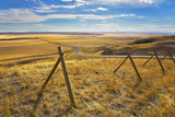 The American prairie in October. A yellow grass and road poster