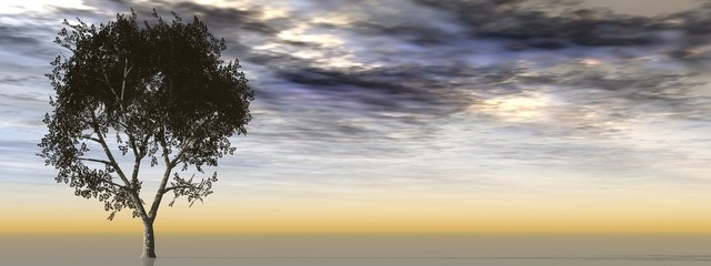 Horizontal banner with an isolated tree on horizon