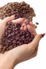 Female hands and coffee beans on white