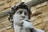 Firenze, Piazza della Signoria: il Davide di Michelangelo 2 poster