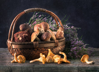Ceps in a basket in an environment of a heather.