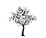 Fototapety vecteur série, arbre vectoriel - vector serie, tree and leaves