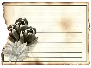 Blank post card for condolence, old paper