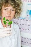 scientist in research agriculture laboratory poster