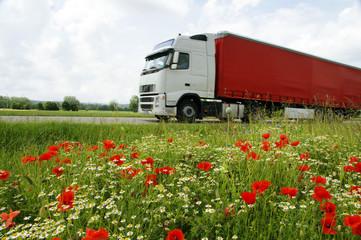 LKW vor Wiesenblumen