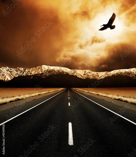 Leinwanddruck Bild The open road and the soaring bird