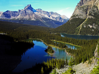 Bergseen Lake o'Hara Yoho National Park BC Canada