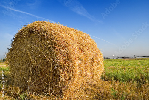 sheaf of hay