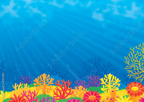 Leinwanddruck Bild Coral reef