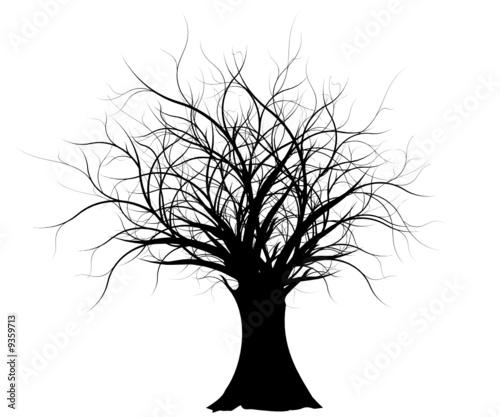 vecteur série, silhouette d'un vieil arbre nu - old vector tree - 9359713