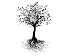 Vecteur série, jeune arbre racines avec - vecteur arbre avec des racines