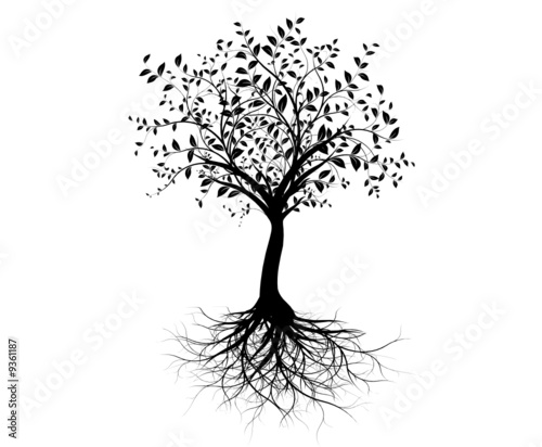 tree roots drawing. vector tree with roots