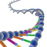 Fototapety DNA 1