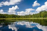 summer scene at lake Suur Kalajarv, Estonia poster