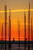 yachts at sunset at pirita harbor, Tallinn, Estonia poster