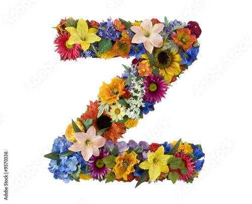 z alphabet. Flower Alphabet - Z