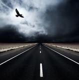 A bird flies away from an incoming storm poster