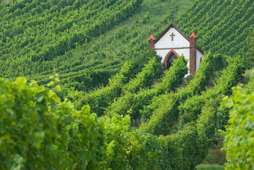 church in vineyard