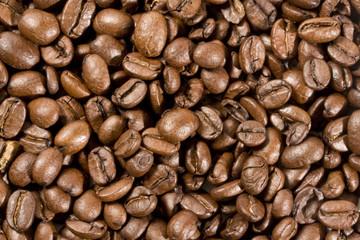 pattern di chicchi di caffé