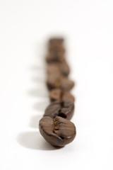 colonna di chicchi di caffé