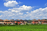Row of residential houses in suburban neighborhood poster