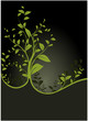 vector serie - floral design and green tree