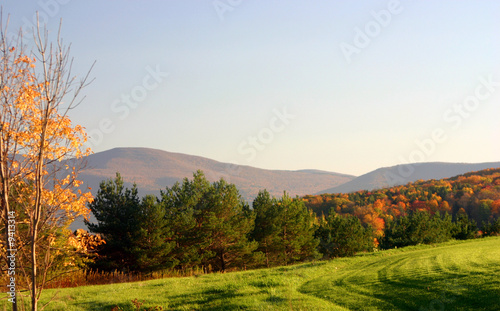 Late autumn meadow in the catskill mountains