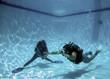 scuba diver swimming - 9416327