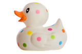 Speckled plastic duck a over white background poster