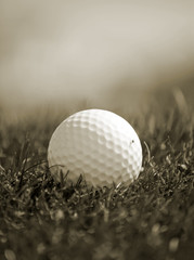 Sepia toned close-up of golfball in grass