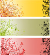 Abstract floral background, element for design, vector set