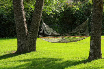 Hammock between two trees with green grass.