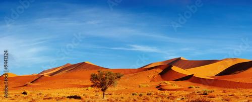 Dunes of Namib Desert at sunset, Sossusvlei, Namibia - 9441324
